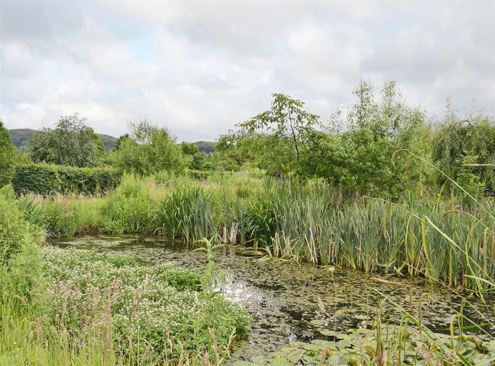 Lush, natural surroundings at Falstaff Cottage,
