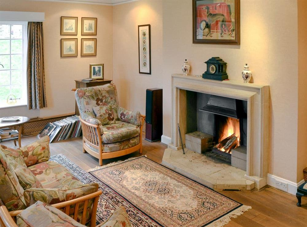 Chamring living room with an open fire at Orchard Hill in Coltishall, Norfolk