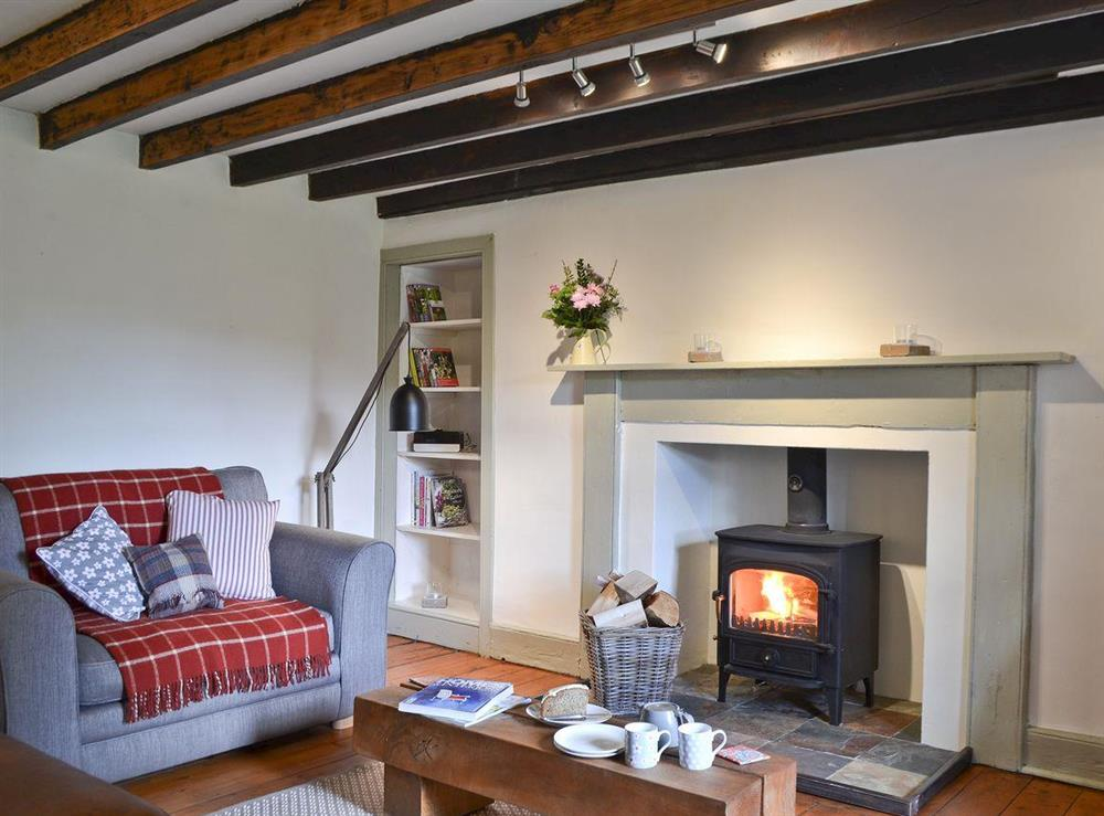 Living room with wood burning stove at Over Blairish Cottage in Keltneyburn, near Aberfeldy, Perthshire