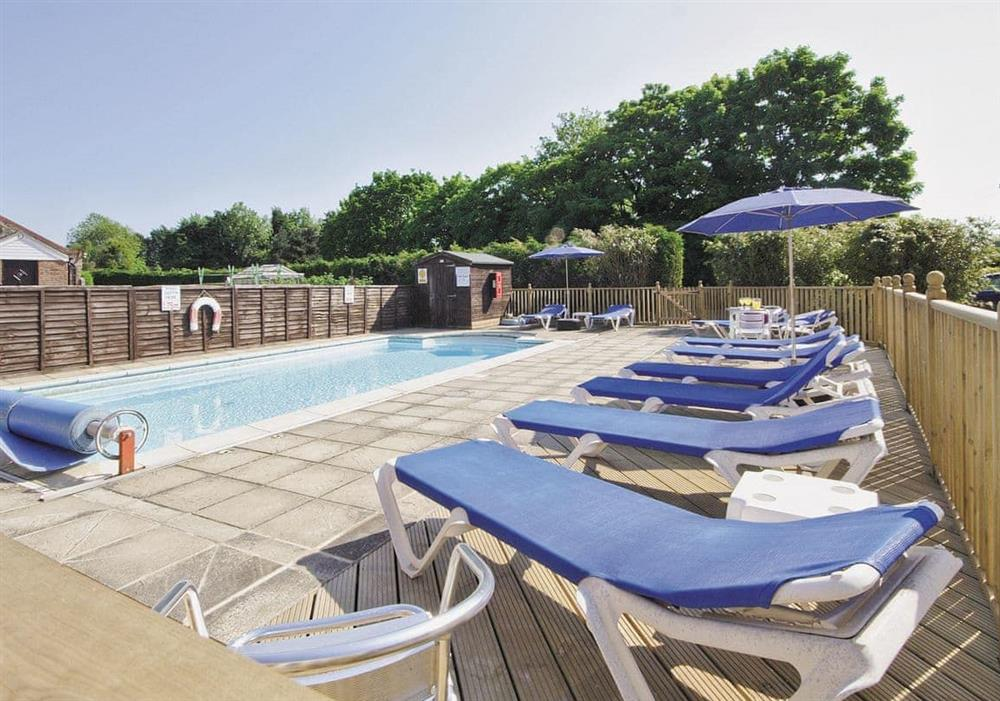 Swimming pool at Pantiles Barn in Kings Lynn, Norfolk