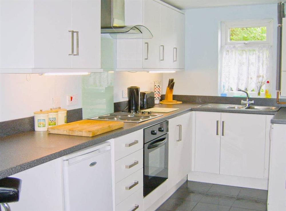 Kitchen at Parcllwyd Cottage in Cilgerran, near Cardigan, Dyfed