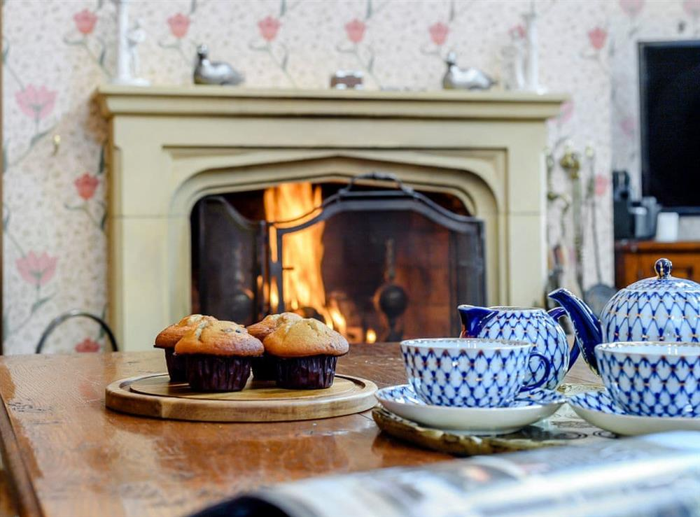 Welcoming living room with open fire at Park Lodge in Sedgeford, Norfolk