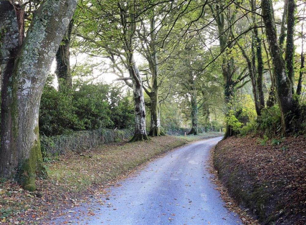 Driveway at Partridge Cottage in , Kingsbridge