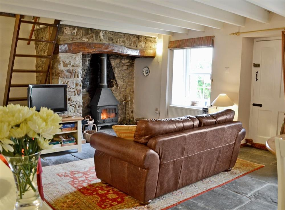 Living room at Pennant Cottage in St Dogmaels, Dyfed