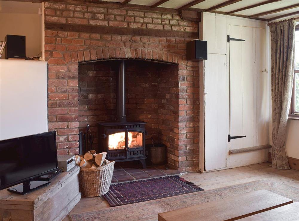 Cosy living room with wood burner at Pond Cottage in Somerleyton, near Lowestoft, Suffolk