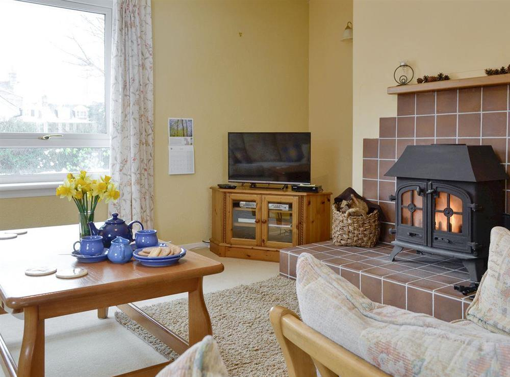 Inviting living area with wood burner at Pronyshiel in Ballater, near Banchory, Aberdeenshire