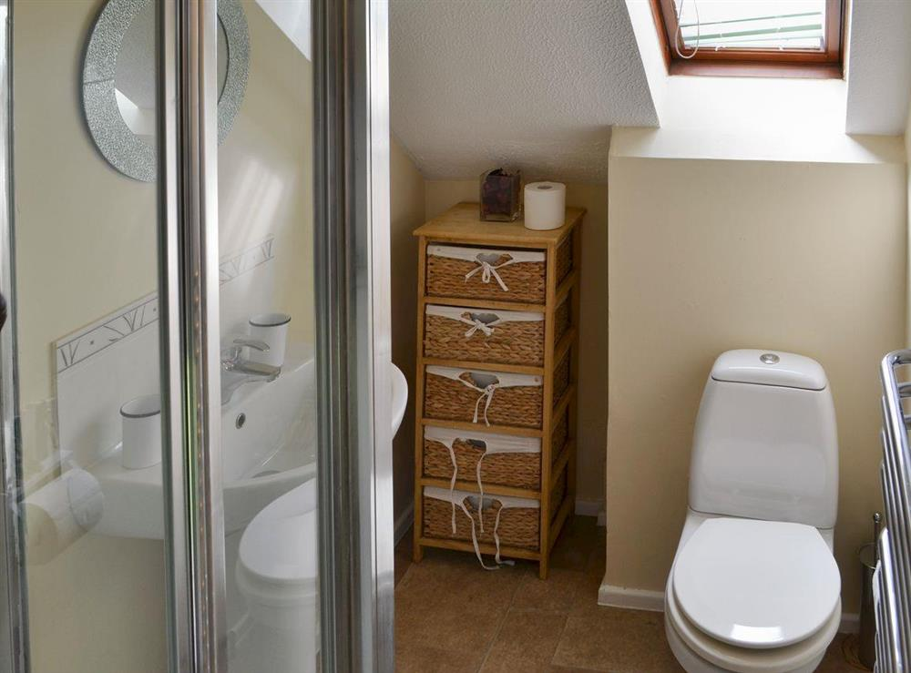 Shower room with shower cubicle and toilet at Puffin Cottage in Wroxham, Norfolk