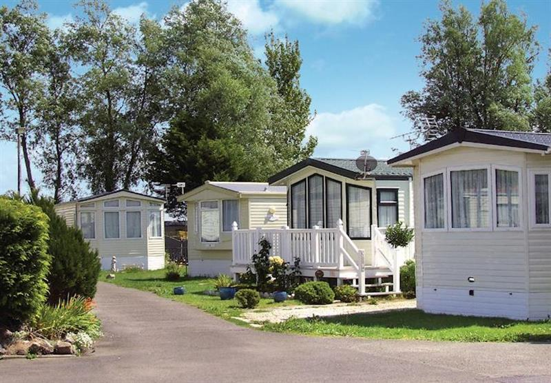 Photo 1 at Purn Holiday Park in Bleadon, Somerset