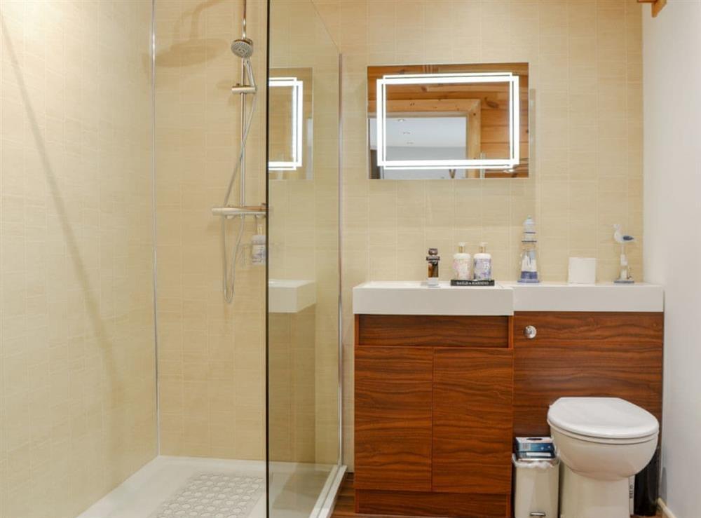 Ideal en-suite shower room at Quarry Lodge in Munsley, near Ledbury, Herefordshire