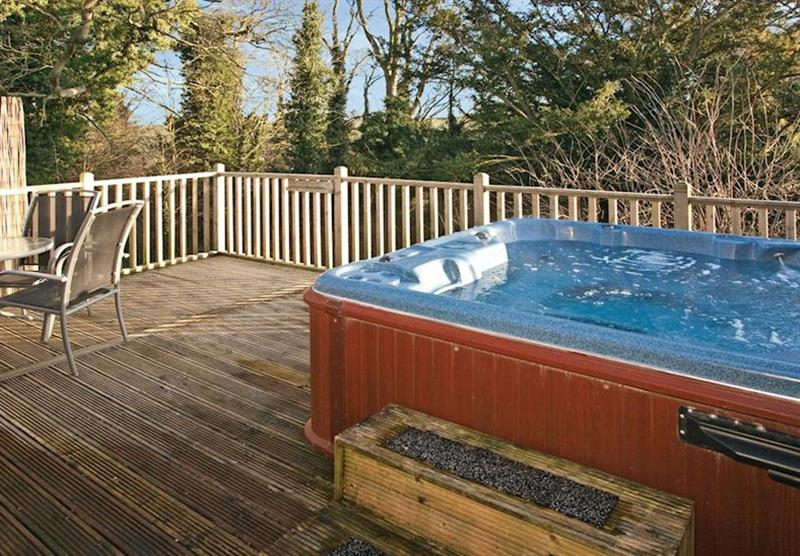 Spa Retreat (photo number 18) at Raywell Hall Country Lodges in , Yorkshire