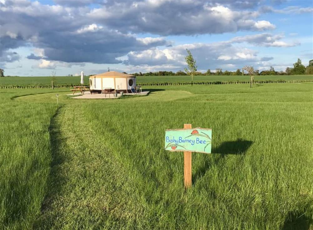 Delightful glamping accommodation in the Norfolk countryside at Bishey Barney Bee,