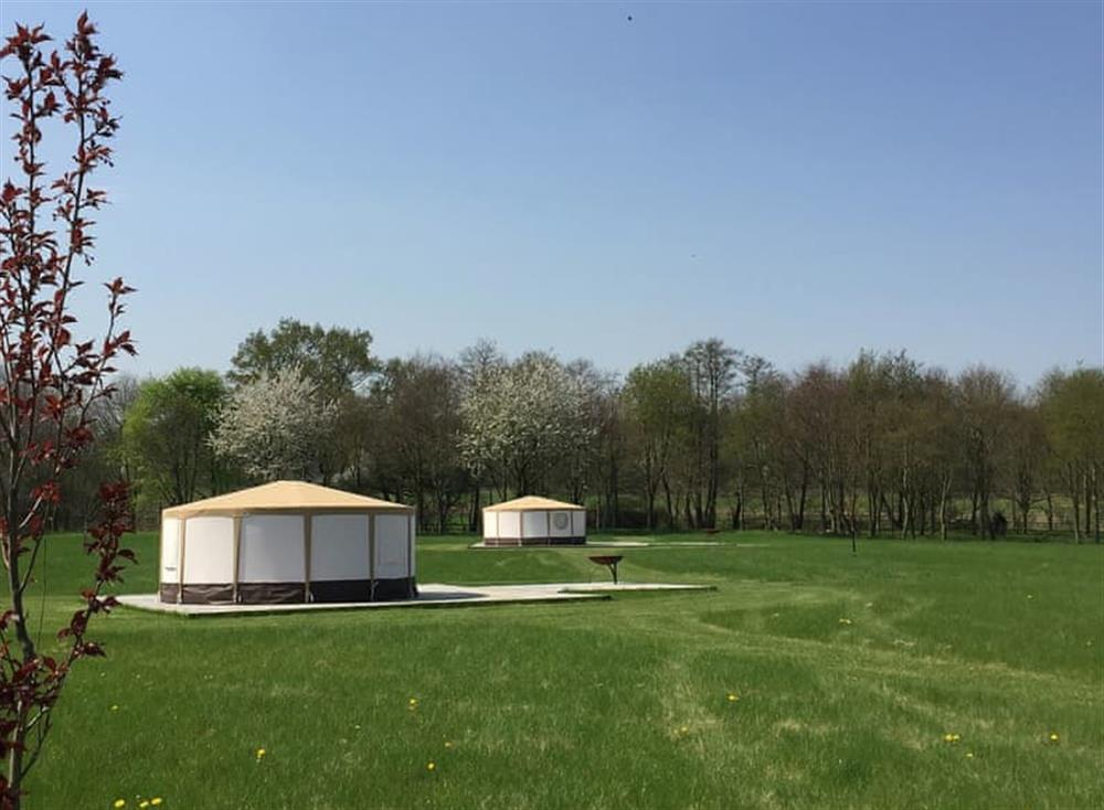 Luxurious individual glamping tents in a wide open space at Harnser,