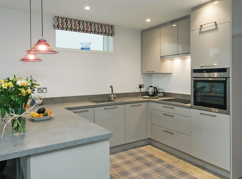 Modern kitchen area at River Coombe in Dartmouth, Devon