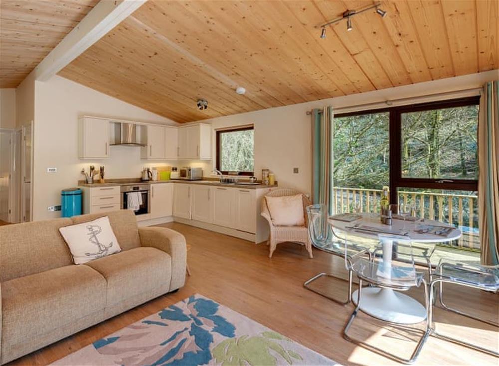 Open plan living space (photo 2) at Riverside at Gara Mill in , Slapton