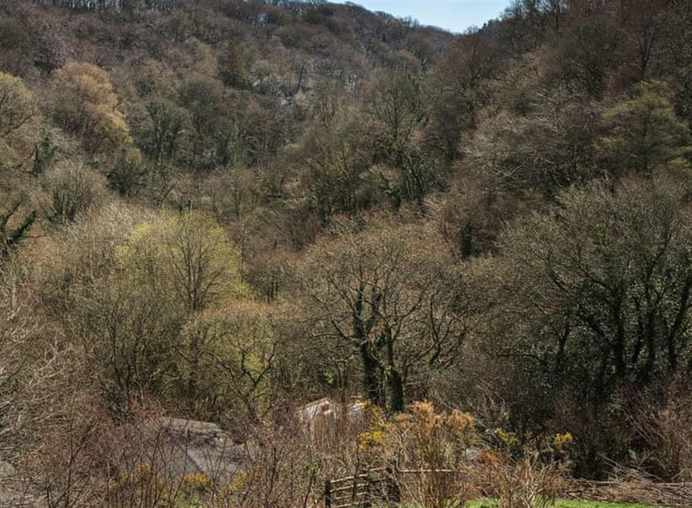 Surrounding area (photo 4) at Riverside at Gara Mill in , Slapton
