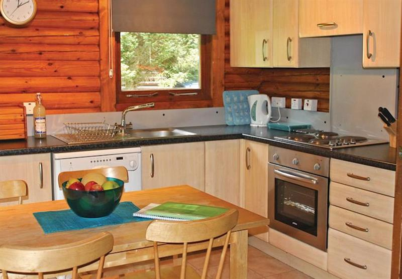 Earn Lodge (photo number 8) at Riverside Log Cabins in Perthshire, Scotland