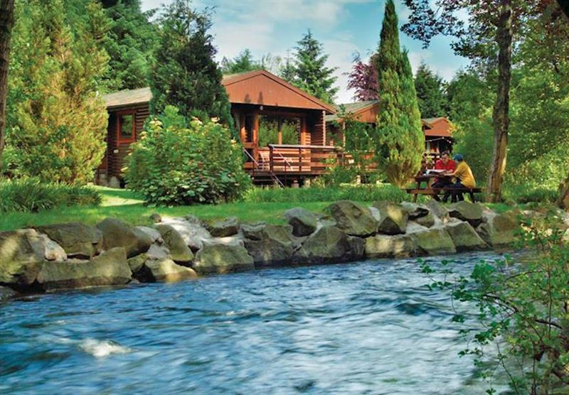 The park setting at Riverside Log Cabins in Perthshire, Scotland