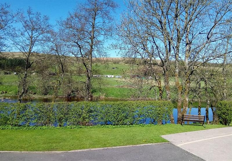 Park Setting at Riverview Holiday Park in Newcastleton, Scottish Borders