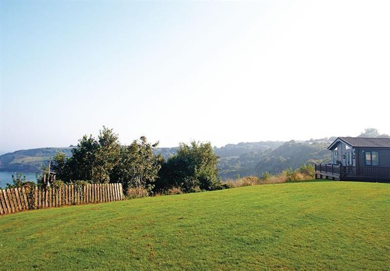 The park setting