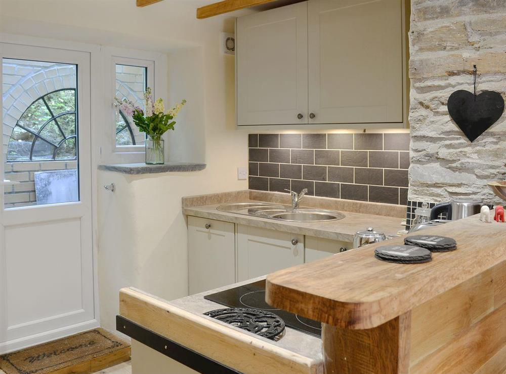 Compact yet well equipped kitchen area at Rock Bottom in Milton Combe, near Yelverton, Devon