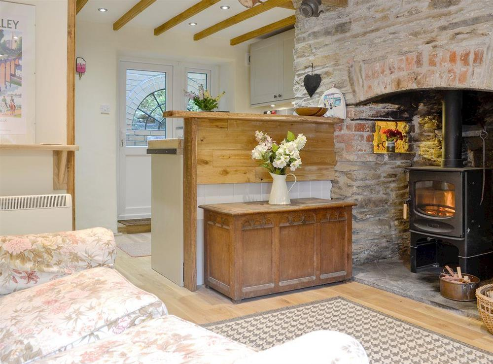 Cosy open plan living space with wood burner at Rock Bottom in Milton Combe, near Yelverton, Devon