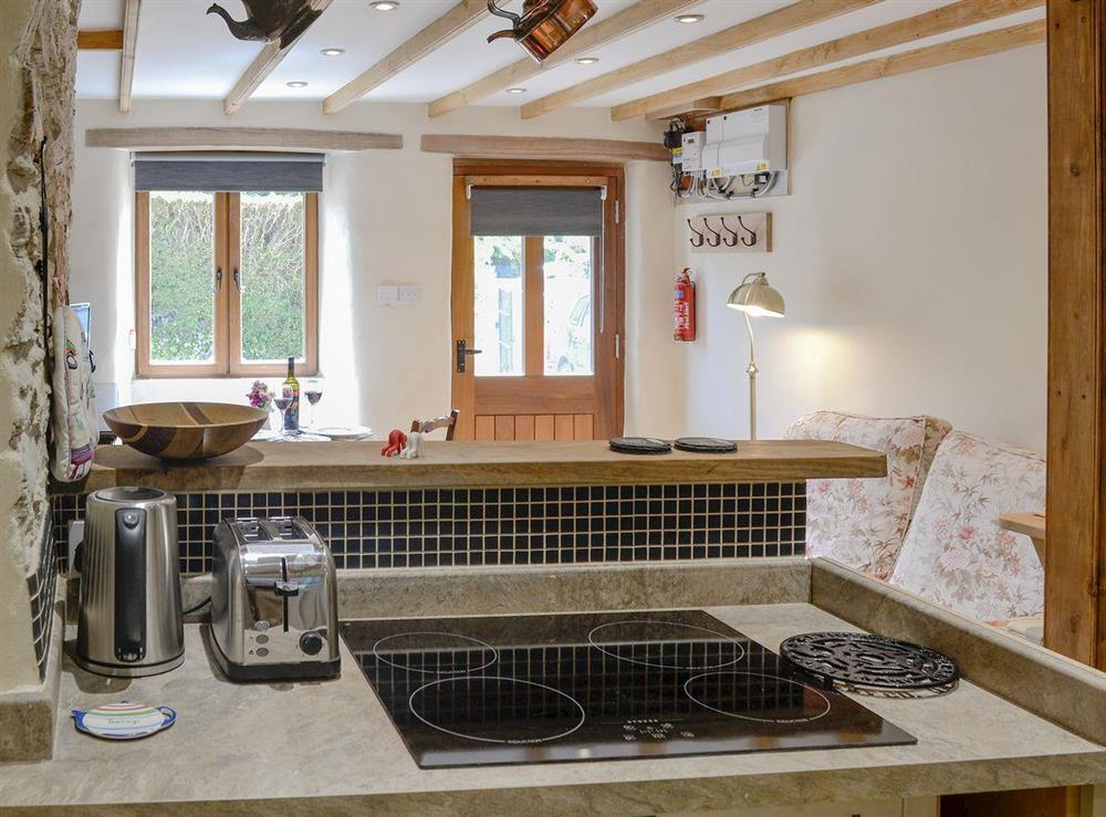 Ideal kitchen area at Rock Bottom in Milton Combe, near Yelverton, Devon