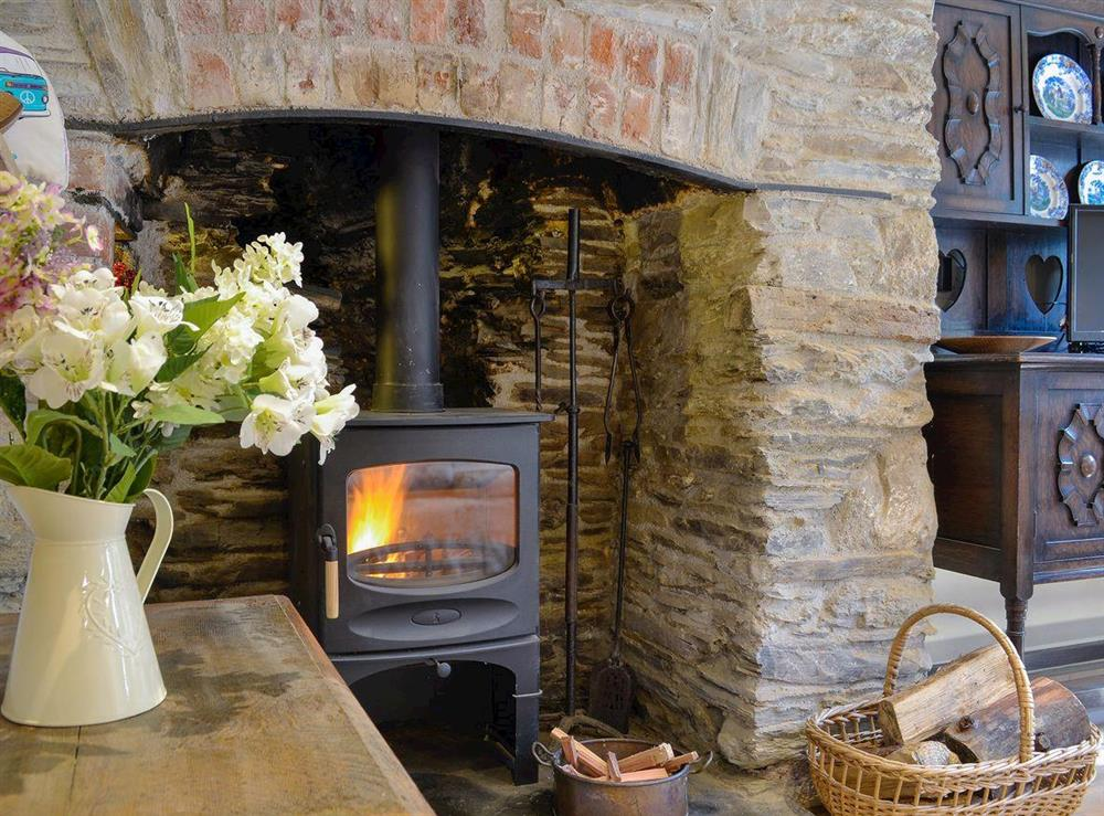 Warm and cosy wood burner at Rock Bottom in Milton Combe, near Yelverton, Devon