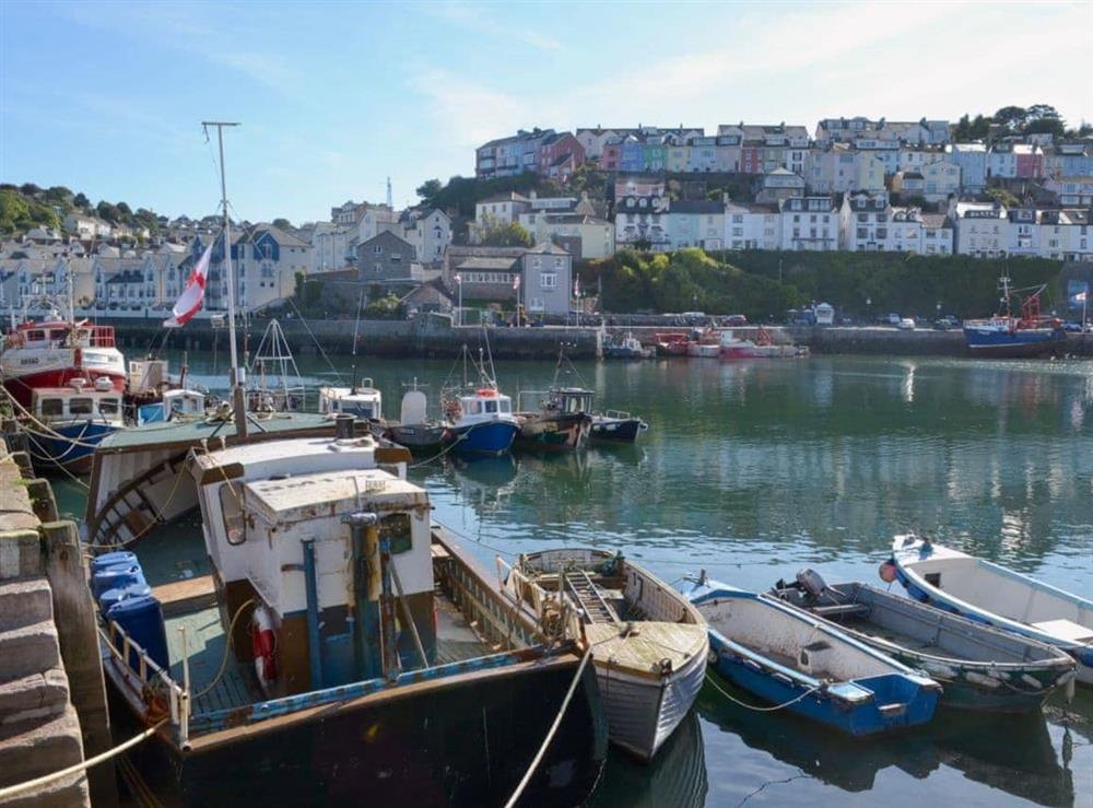 Surrounding area at Rockfish Cottage in Brixham, Devon