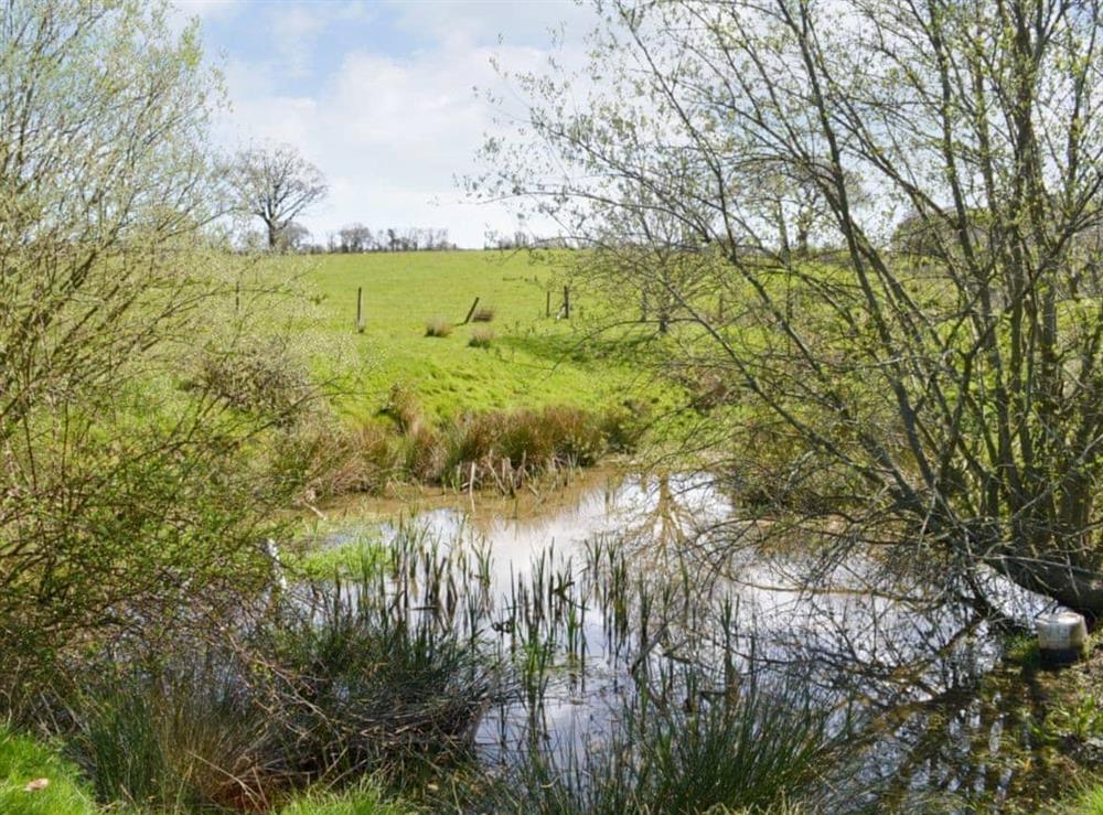 Surrounding area at Rose Barn in Llangoedmor, Nr Cardigan, Dyfed., Great Britain