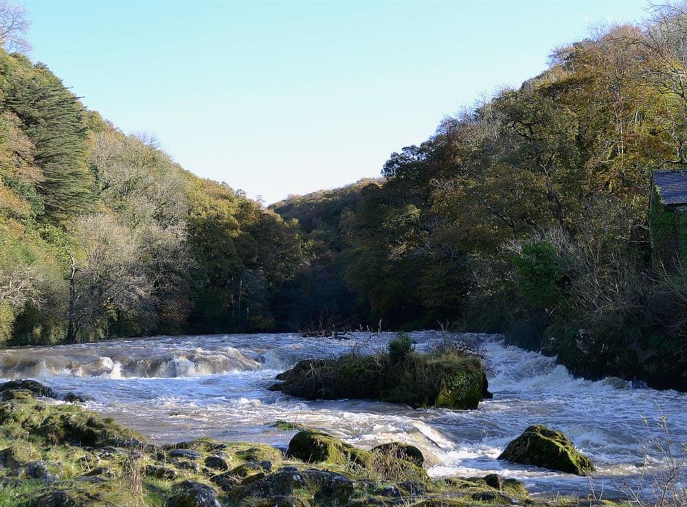 River Teifi at Rosevene in St Dogmaels, Dyfed