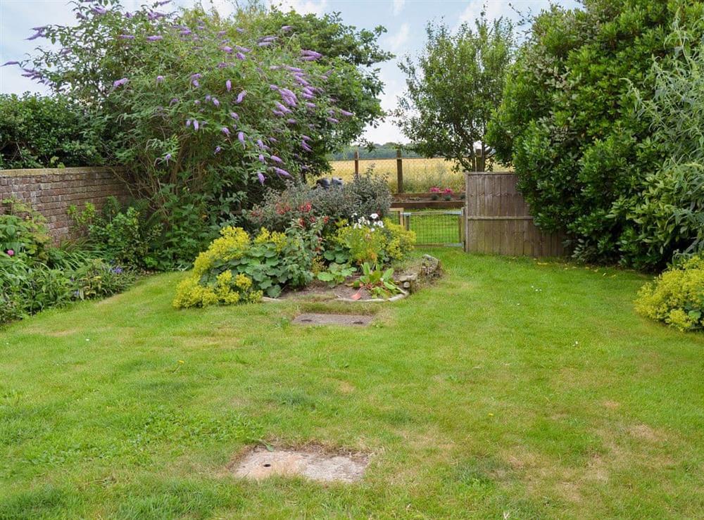 Enclosed lawned garden at Sandhills in Sea Palling, Norfolk
