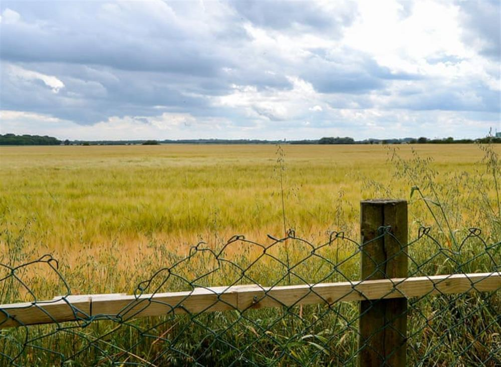 Extensive countryside views to the rear of the property at Sandhills in Sea Palling, Norfolk