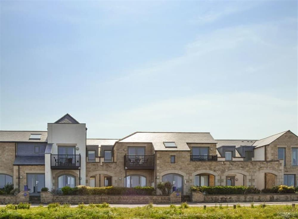Attractive seafront holiday homes