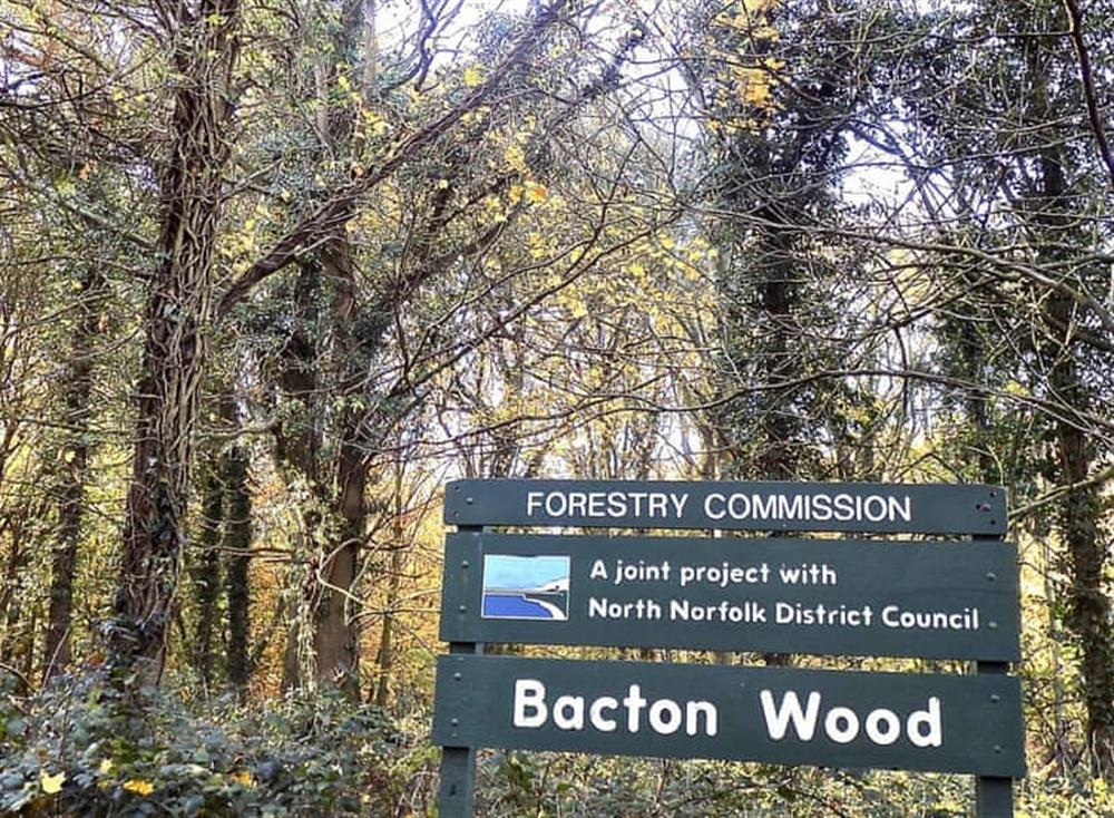 Bacton Wood, nearby