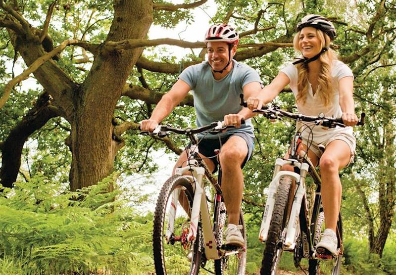 Bike hire at Sherwood Castle Holiday Forest in Nottinghamshire, Heart of England