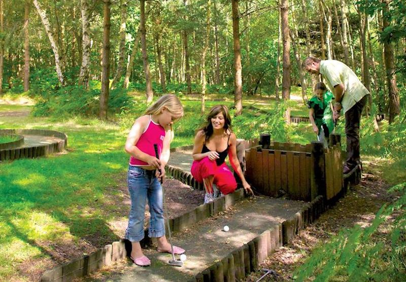 Crazy golf at Sherwood Castle Holiday Forest in Nottinghamshire, Heart of England