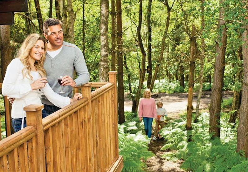 Lodges nestling deep in 40 acres of woodland at Sherwood Castle Holiday Forest in Nottinghamshire, Heart of England