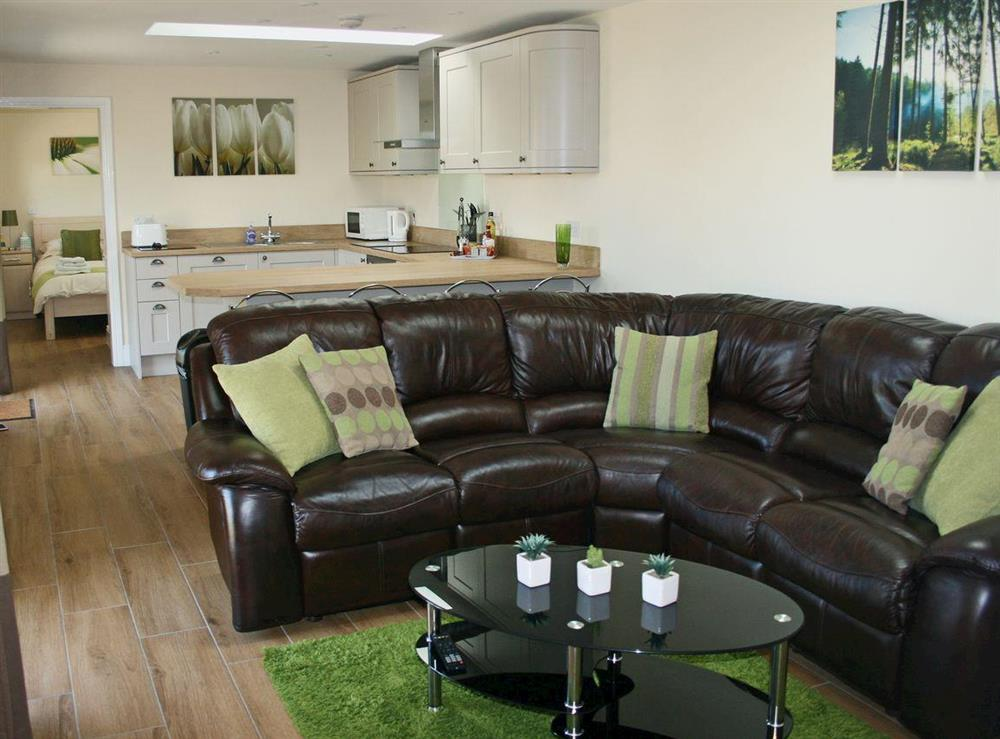 Beautifully presented open plan living space at Sherwood Forest Lodge in Kings Clipstone, near Mansfield, Nottinghamshire