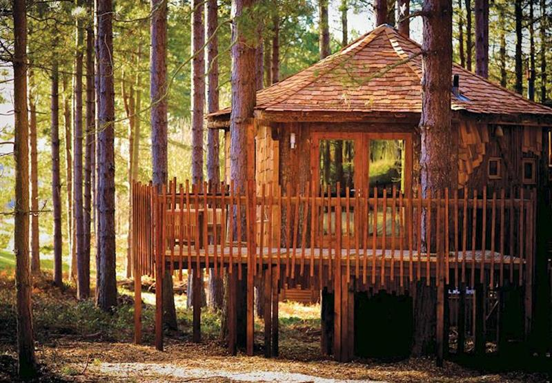 Photo 19 at Sherwood Forest Lodges in Sherwood Forest, Nr Edwinstowe, Nottinghamshire