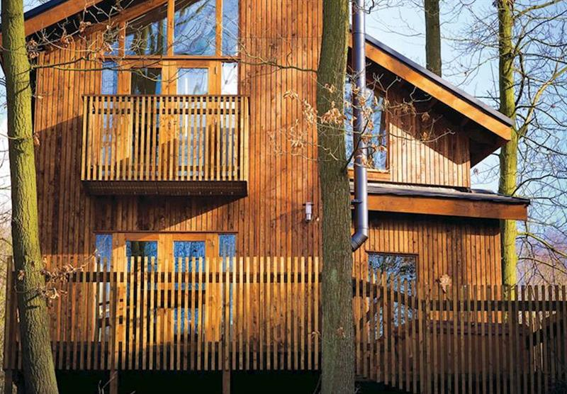Typical Golden Oak 1 at Sherwood Forest Lodges in Sherwood Forest, Nr Edwinstowe, Nottinghamshire