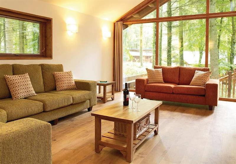 Typical Silver Birch 2 at Sherwood Forest Lodges in Sherwood Forest, Nr Edwinstowe, Nottinghamshire