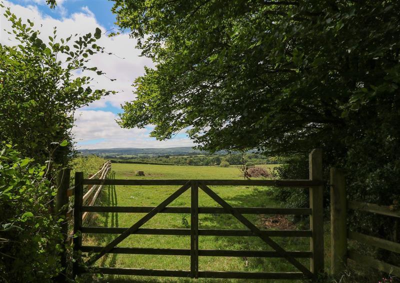 The setting around Shilstone Lodge