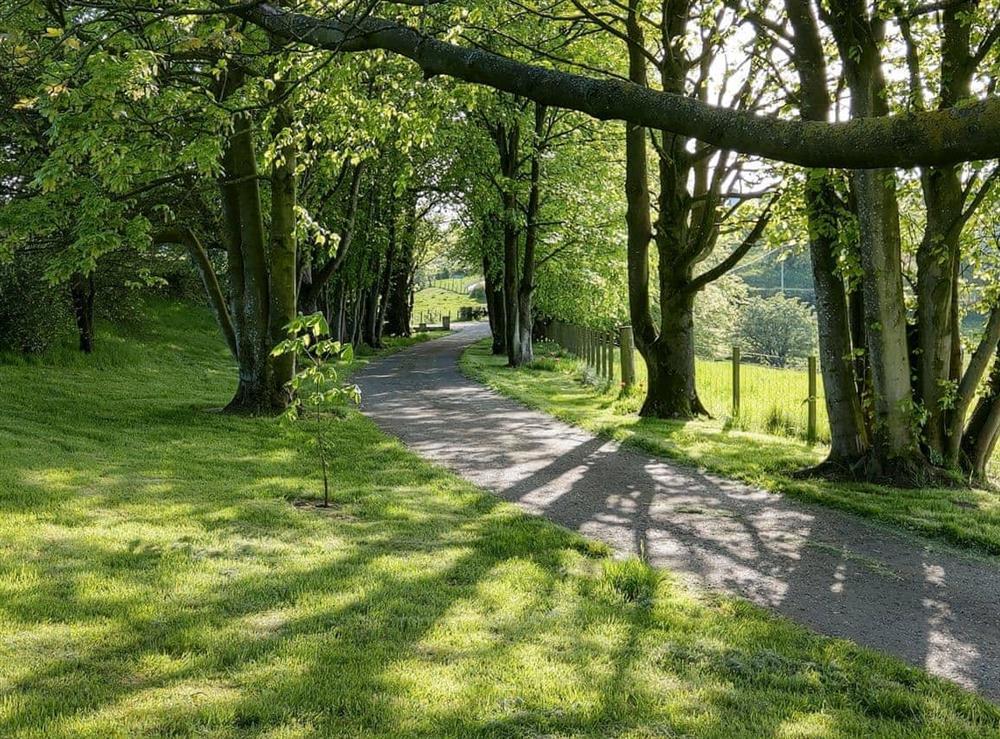 Lovely surrounding area at Smithfield House in Tarbolton, near Ayr, Ayrshire