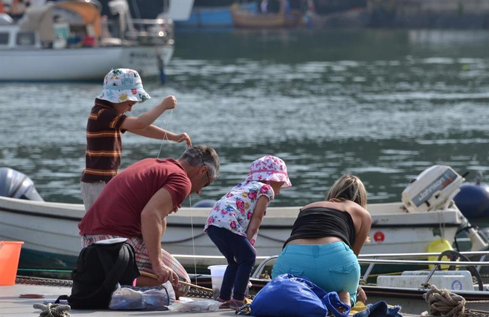 Crabbing is a popular pastime in Dittisham at Solstice, Blackawton