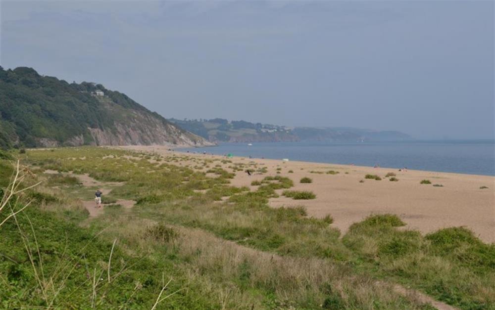 Strete Gate beach on Slapton Sands at Solstice, Blackawton