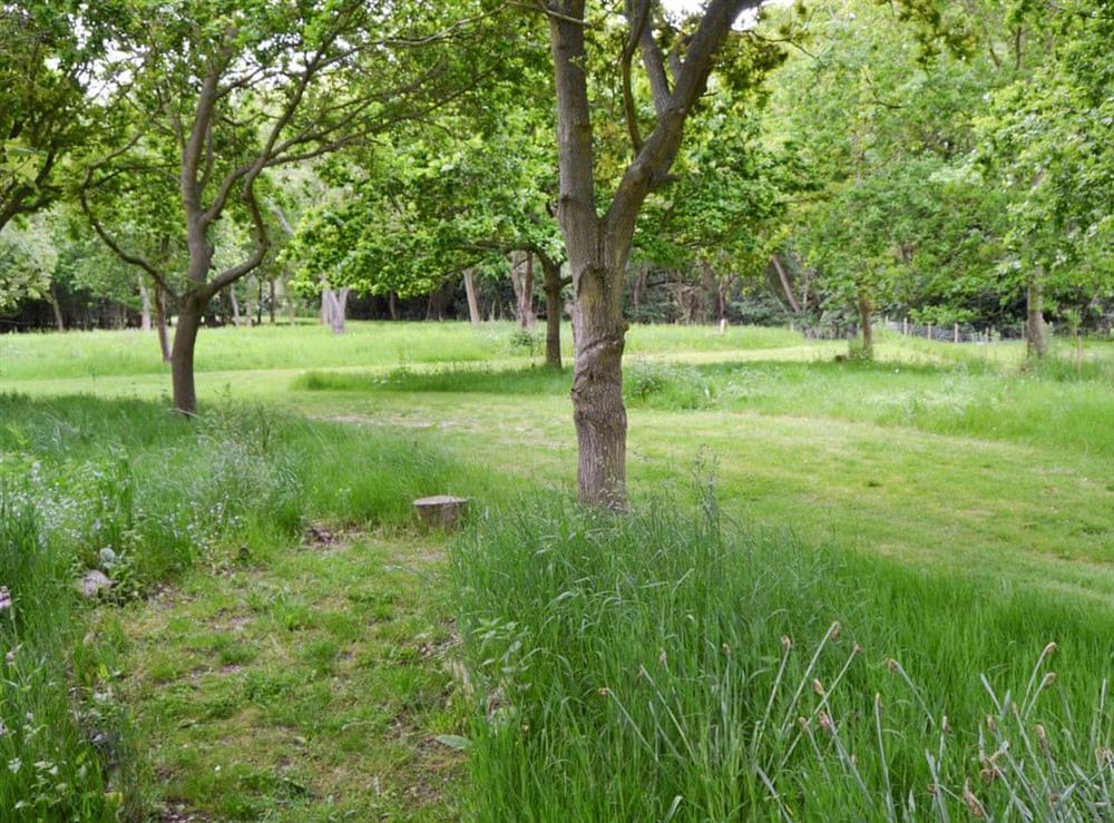 Extensive shared gardens at Courtyard Barn,
