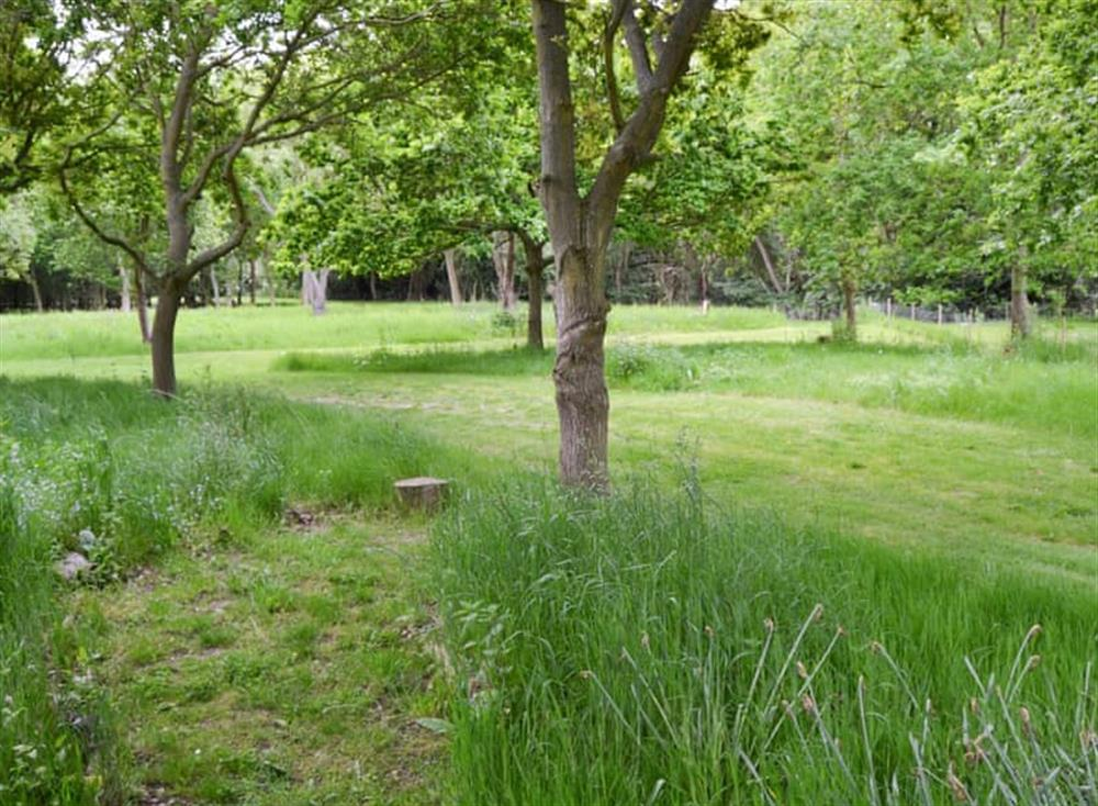 Extensive shared gardens at Oak View Lodge,