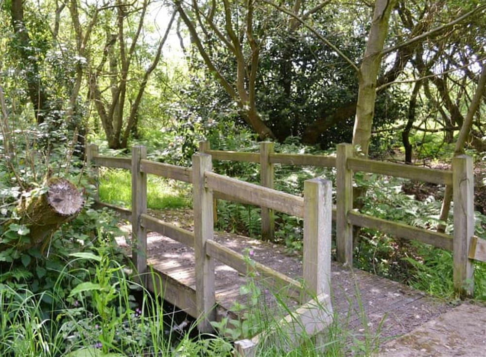 Shared gardens and grounds (photo 4) at Oak View Lodge,
