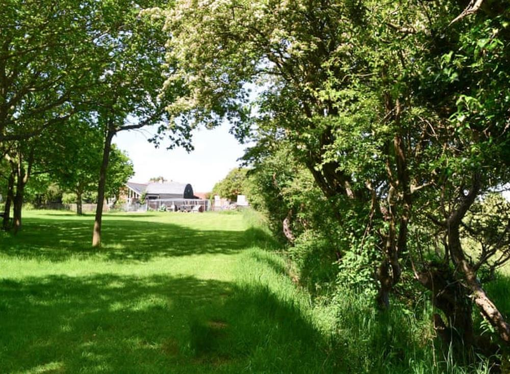 Shared gardens and grounds at Oak View Lodge,