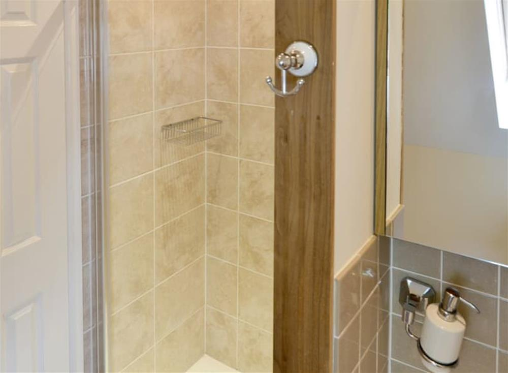 Shower room at Oak View Lodge,